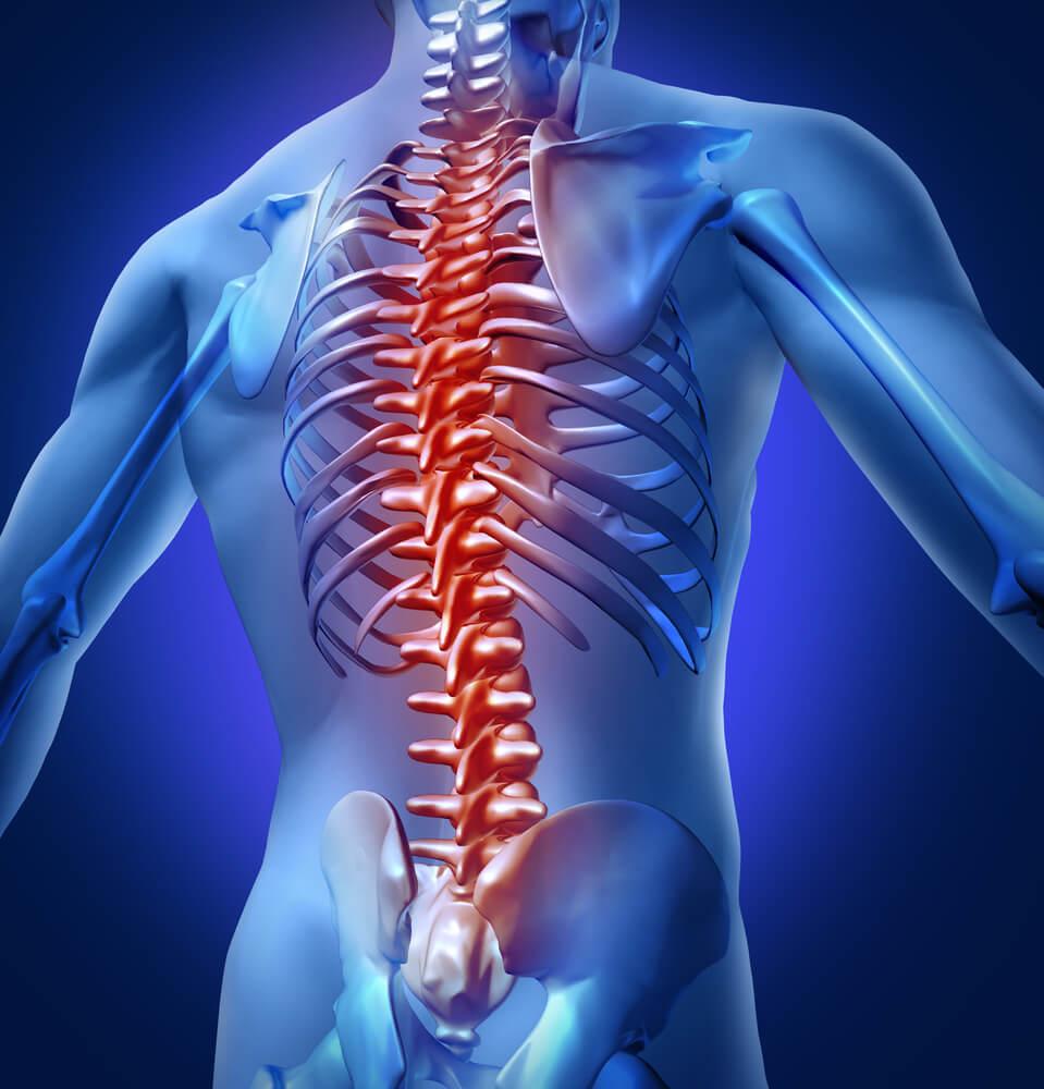 Human Back Pain - Teleleaf